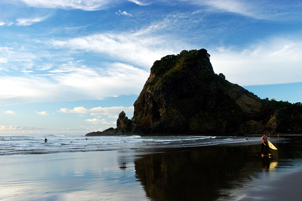 Day Tours In Auckland New Zealand