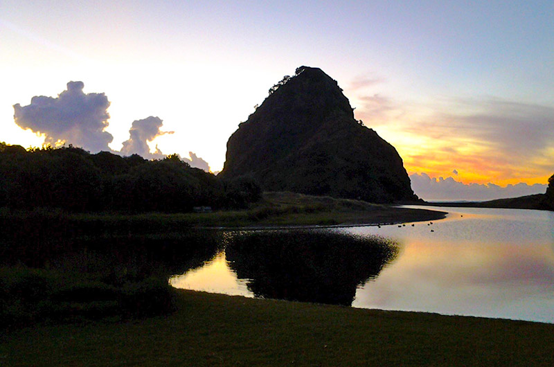 Lion Rock Piha Beach Black Sand Beach NZ