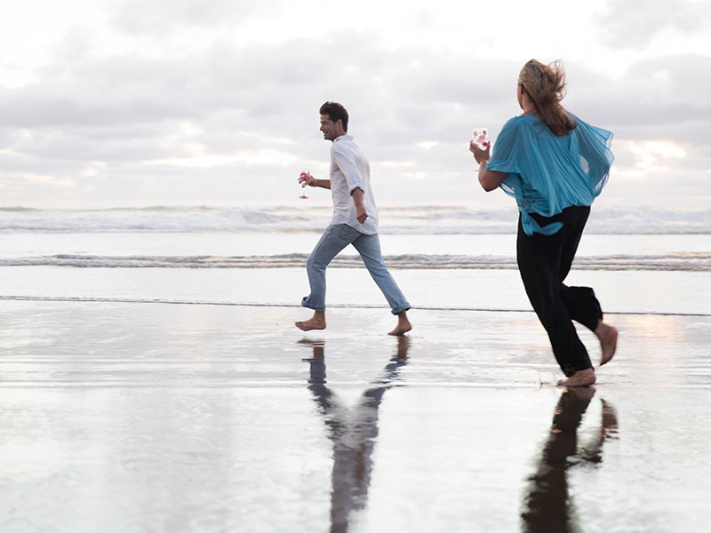 Auckland Beaches Luxury Escapes Muriwai Beach by Day