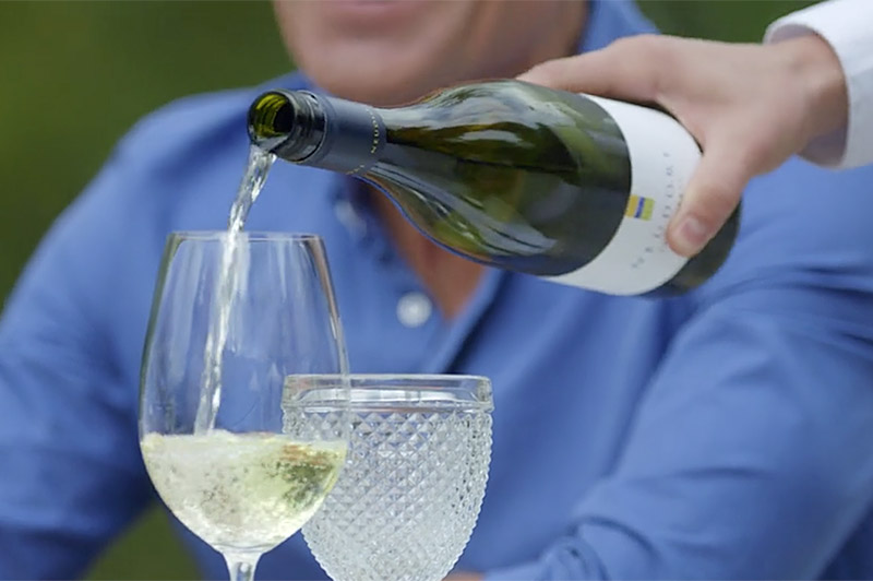 Enjoy Award Winning Wines at Auckland Wineries